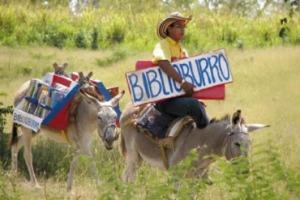 Biblioburro-picture-2